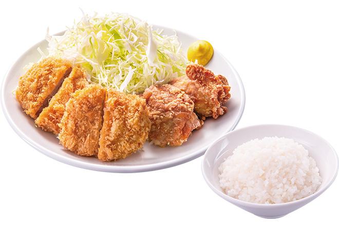 ヒレとから揚げ+ご飯