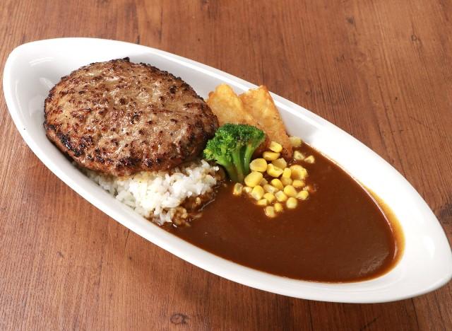 ハンバーグカレー Curry rice with hamburg steak